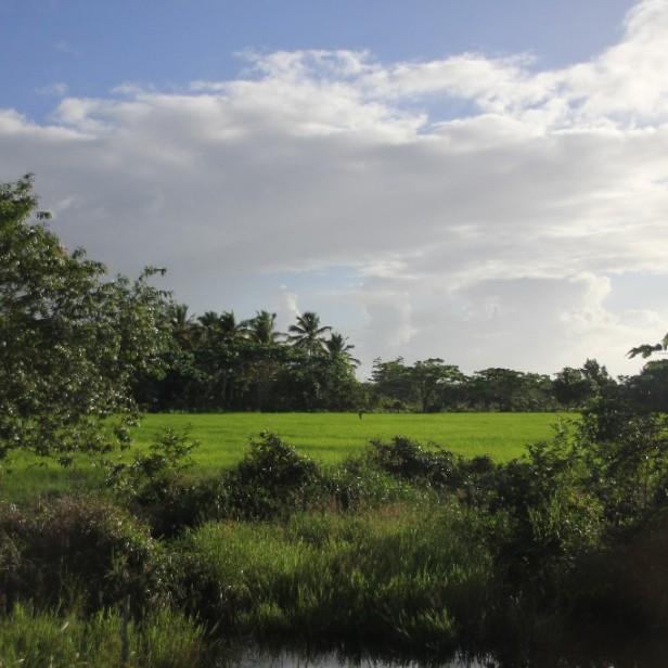 Sabana-de-la-Mar00046