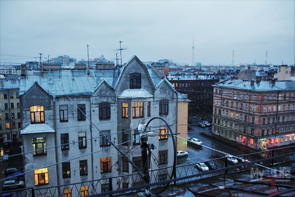 Roof_Piter001