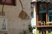 Bar_Montenegro033