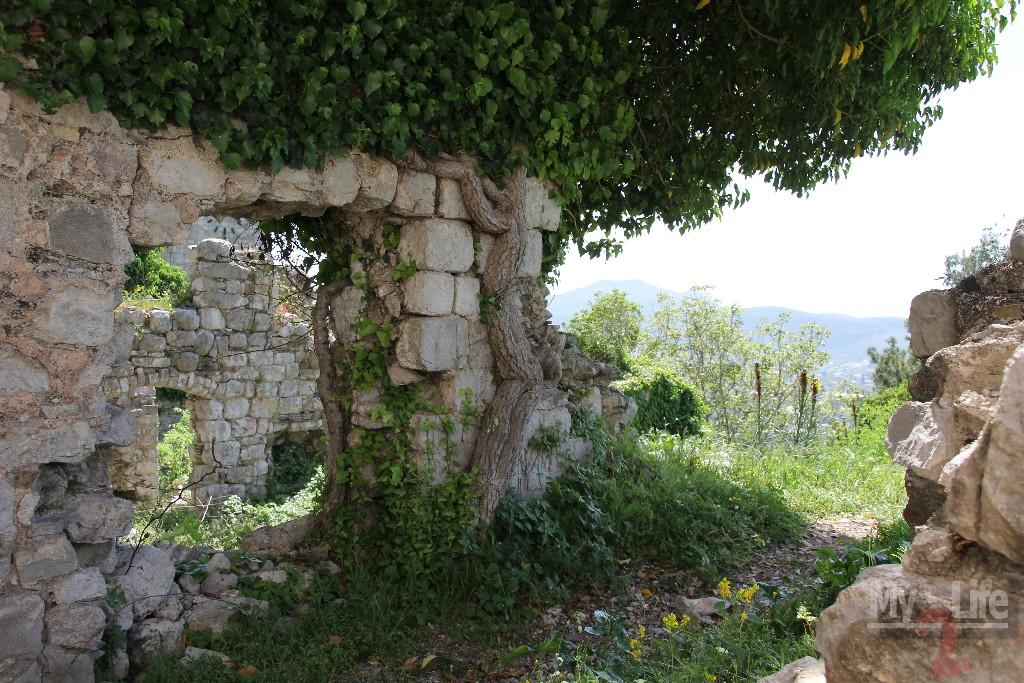 Bar_Montenegro038